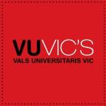 logo_quadrat_vuvics OK
